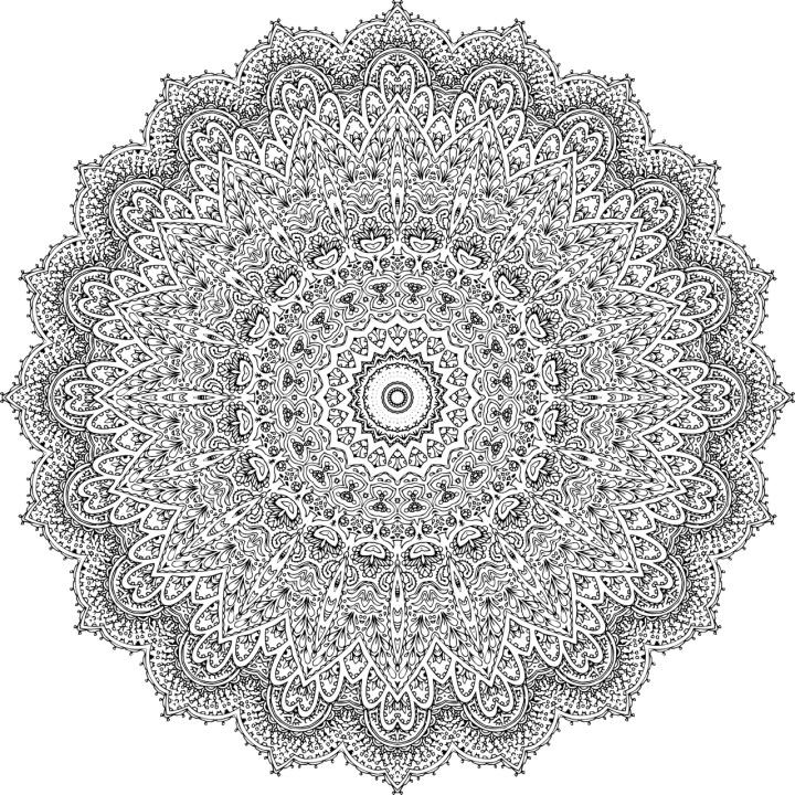fullsizeoutput_574.jpeg